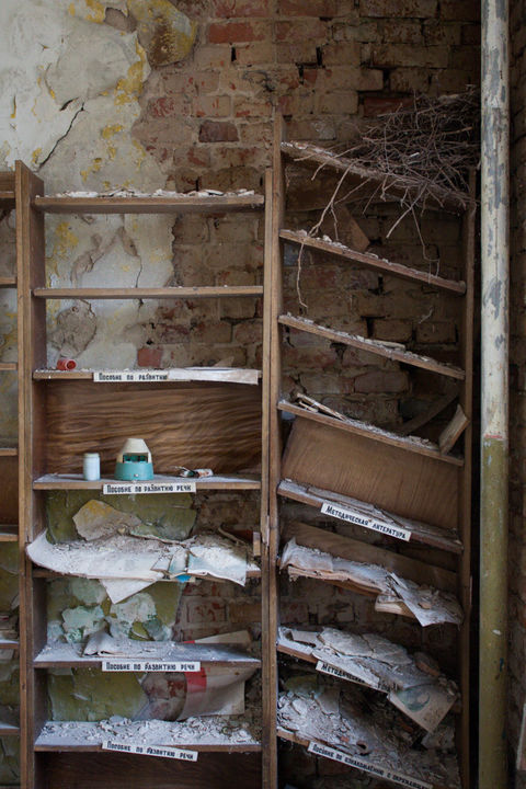 Chernobyl Bookshelves